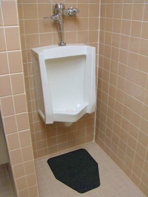 DesignStep Disposable Urinal Mats