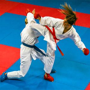 Mixed Martial Arts Foam Tiles