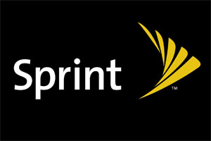 Sprint Logo Floor Mats